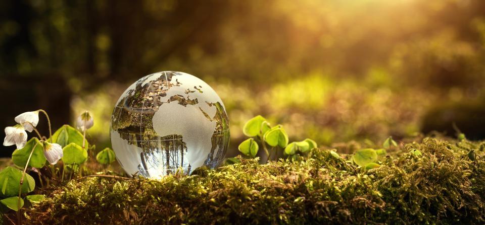 Devenir Ingénieur Qualité-Sécurité-Environnement