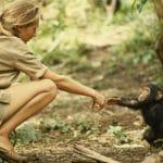 Devenir zoologiste